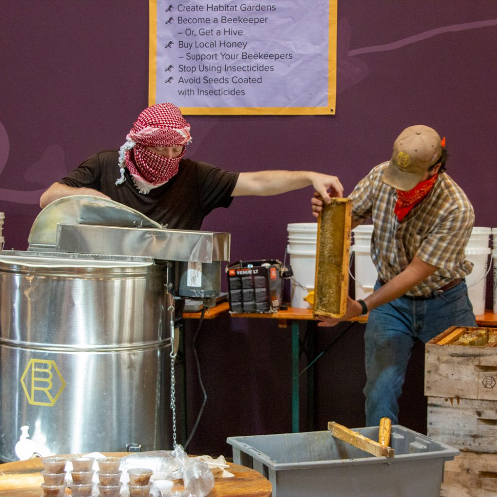 Castro Valley Natural Grocery Honey Harvest
